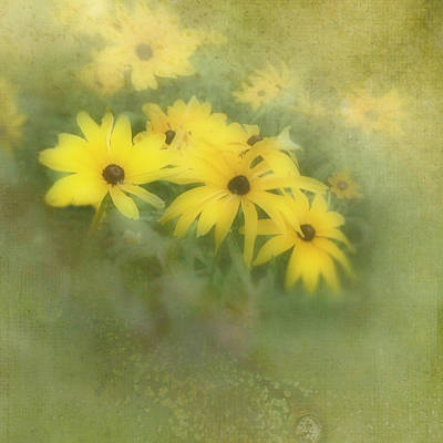 Photograph - Summer Haze by Ann Powell