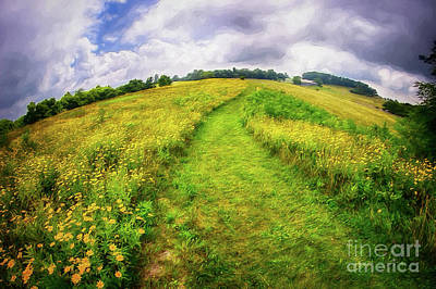 Art Print featuring the painting Summer Hike Through Blue Ridge Flowers Ap by Dan Carmichael