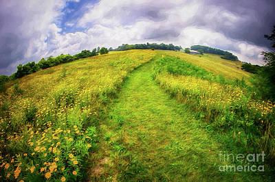 Painting - Summer Hike Through Blue Ridge Flowers Ap by Dan Carmichael