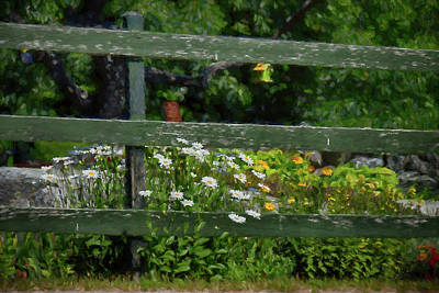 Photograph - Summer In Maine by Tricia Marchlik