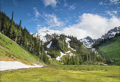 Photograph - Summer In Olympic National Park by Kunal Mehra