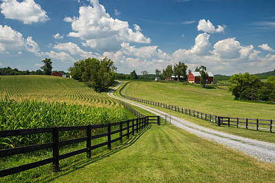 Summer In The Ag Reserve Art Print by Martin Radigan