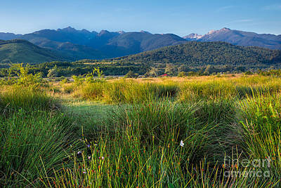 Photograph - Summer In The Carpathains by Susanna Patras