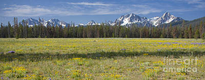 Photograph - Summer In The Sawtooths by Idaho Scenic Images Linda Lantzy