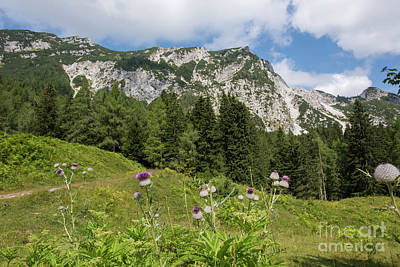 Photograph - Summer In The Slovenian Alps by Juli Scalzi