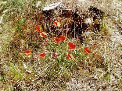 Photograph - Summer Is Coming by Dorothy Berry-Lound