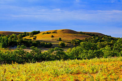 Photograph - Summer Kansas Flint Hills by Anna Louise