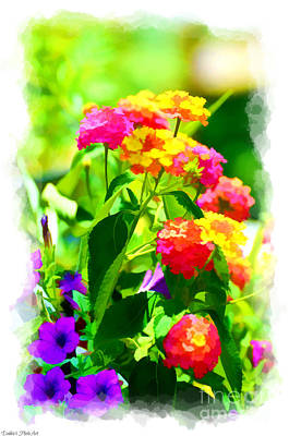 Photograph - Summer Lantana Garden - Digital Paint 1 by Debbie Portwood