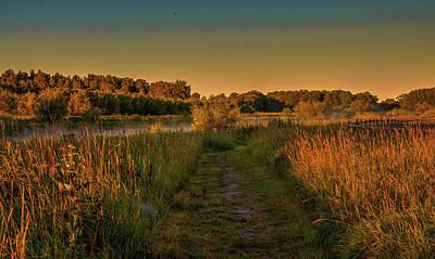 Photograph - Summer Light #g5 by Leif Sohlman