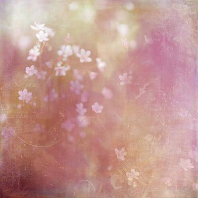 Dappled Light Digital Art - Summer Light by Margaret Goodwin