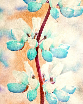 Abstract Digital Painting - Summer Lupine by Bonnie Bruno