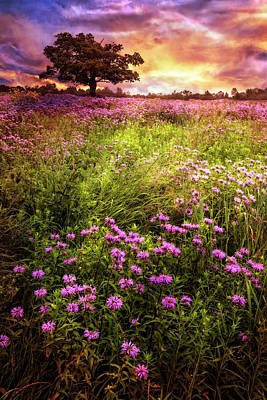 Photograph - Summer Meadows by Debra and Dave Vanderlaan