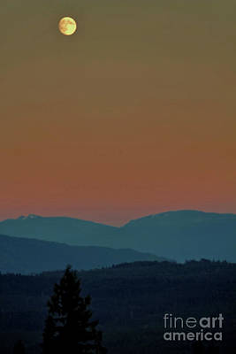 Photograph - Summer Moon Rising by Victor K