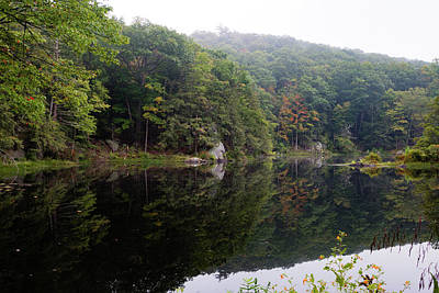 Photograph - Summer Morning At Sanctuary Pond by Jeff Severson
