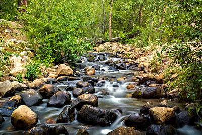 Photograph - Spilling Creek by Maria Coulson