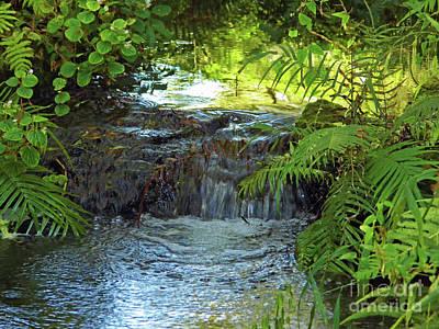 Photograph - Summer Nature Beauty by D Hackett