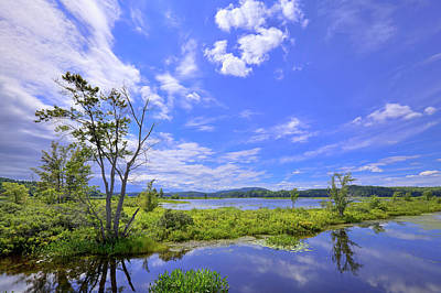 Photograph - Summer On Tupper Lake by David Patterson