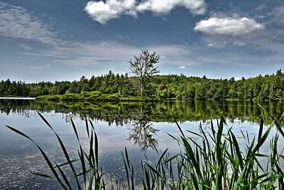 Photograph - Summer On Waukeena Lake by Naturally NH