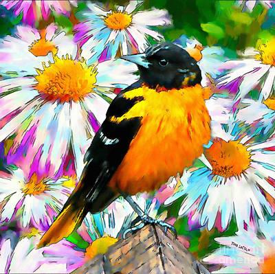 Oriole Digital Art - Summer Oriole by Tina LeCour
