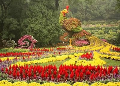 Phoenix Flowers Photograph - Summer Palace Flower Phoenix by Carol Groenen