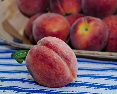 Photograph - Summer Peaches by Stephanie Maatta Smith