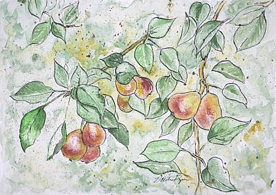 Pear Tree Painting - Summer Pears by Nathan Ryan