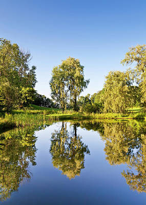 Photograph - Summer Pond Reflections by Alan L Graham