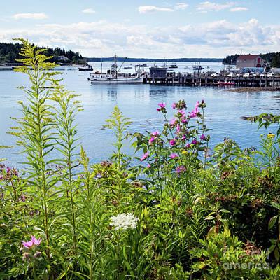 Photograph - Summer, Port Clyde, Maine  -87342 by John Bald