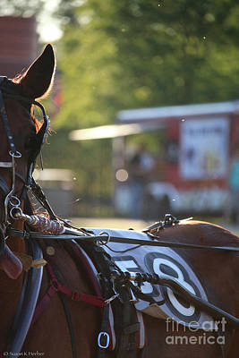 Photograph - Summer Racing by Susan Herber