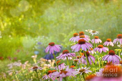 Summer Rains Art Print by Beve Brown-Clark Photography