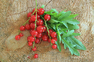 Summer, Red Berries And Rucola On Wooden Board Art Print