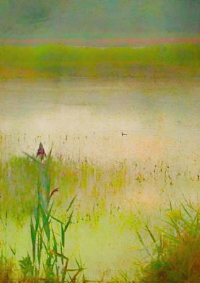 Summer Reeds Art Print by Catherine Alfidi