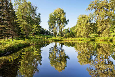 Photograph - Summer Reflections by Alan L Graham