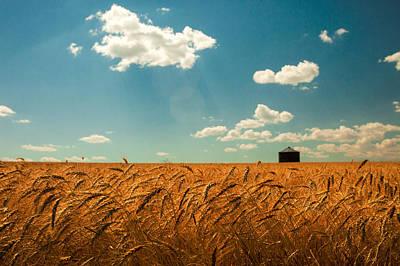 Rural Photograph - Summer Respit by Todd Klassy