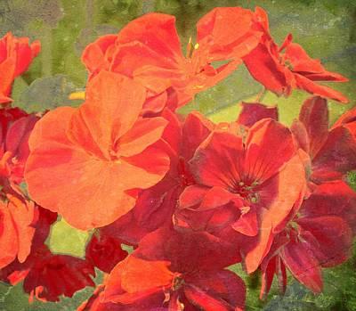 Summer Rouge Art Print