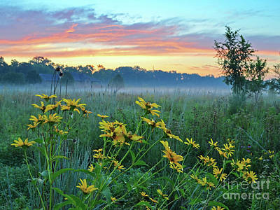Photograph - Summer Sanctuary Sunrise by Third Eye Perspectives Photographic Fine Art