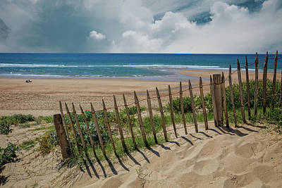 Photograph - Summer Sand Dunes by Debra and Dave Vanderlaan