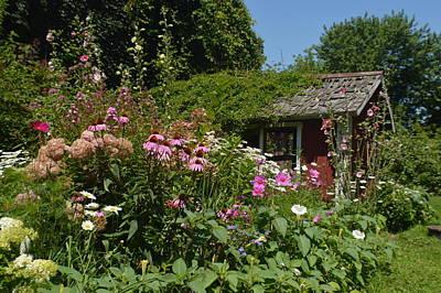 Fushia Photograph - Summer Secret Garden by Tina M Wenger