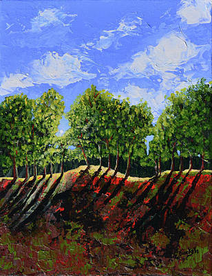 Painting - Summer Shadows by Donna Blackhall