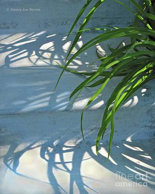 Photograph - Summer Shadows by Nancy Lee Moran