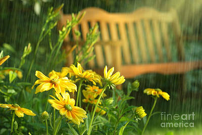 Macro Digital Art - Summer Showers by Sandra Cunningham