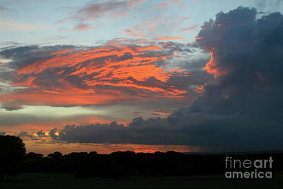 Photograph - Summer Sky On Fire  by Paula Guttilla