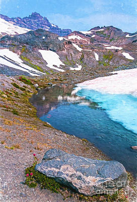 Photograph - Summer Snowmelt by Sharon Seaward