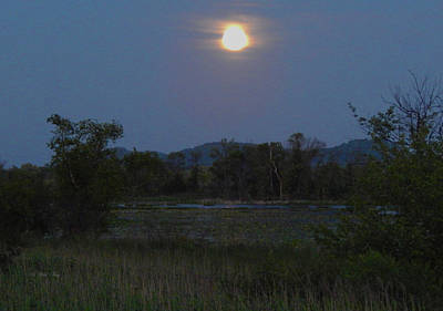 Photograph - Summer Solstice Full Moon by Wild Thing
