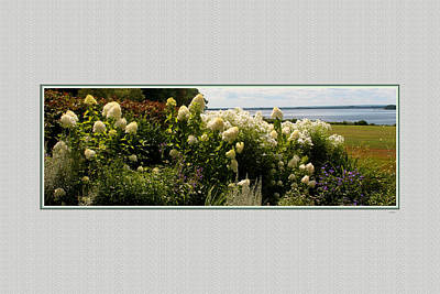 Waterview Photograph - Summer Spledor by Tom Prendergast
