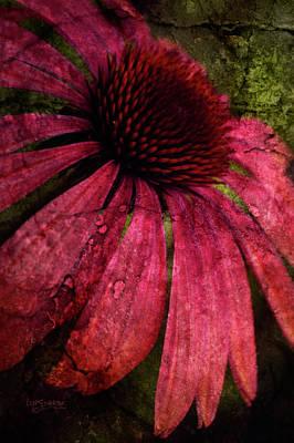 Photograph - Summer Splendor by Joy Gerow