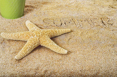 Photograph - Summer Starfish by Marianne Campolongo