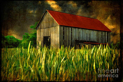 Summer Storm Art Print by Lois Bryan
