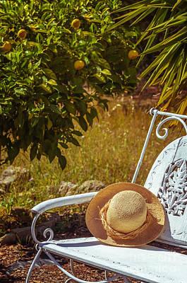 Summer Straw Hat Art Print by Amanda Elwell