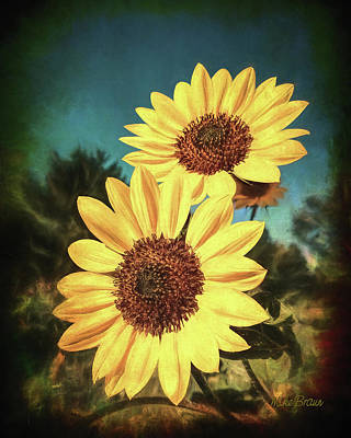 Photograph - Summer Sunflowers by Mike Braun